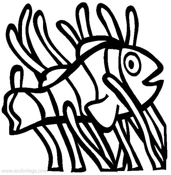Clown Fish In The Coral Reef Coloring Pages - XColorings.com