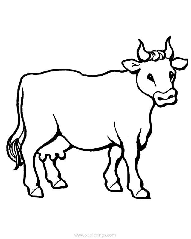 Cow Coloring Page For Toddlers - XColorings.com