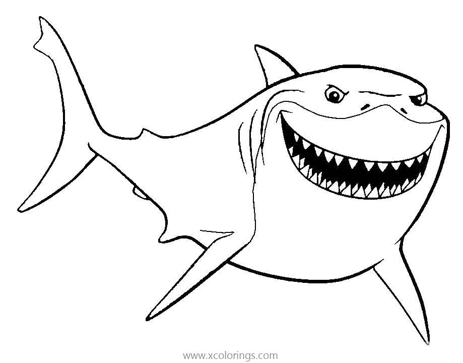 Free Sea Life Great White Shark Coloring Page printable