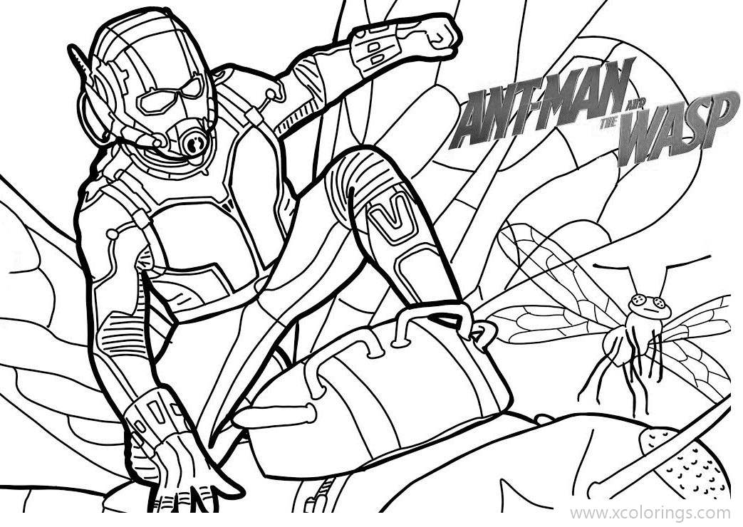 Ant Man Coloring Pages From Marvel Superheroes - XColorings.com